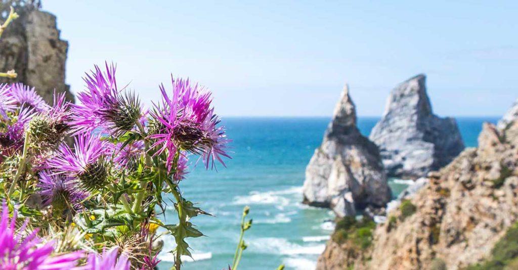 Wandern im Norden Portugals im SaltyWay Kletter und Surfcamp